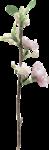 MagicalReality_VinMem1_pink flowers-twig1.png