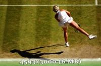 http://img-fotki.yandex.ru/get/6833/14186792.4f/0_da606_532f4110_orig.jpg
