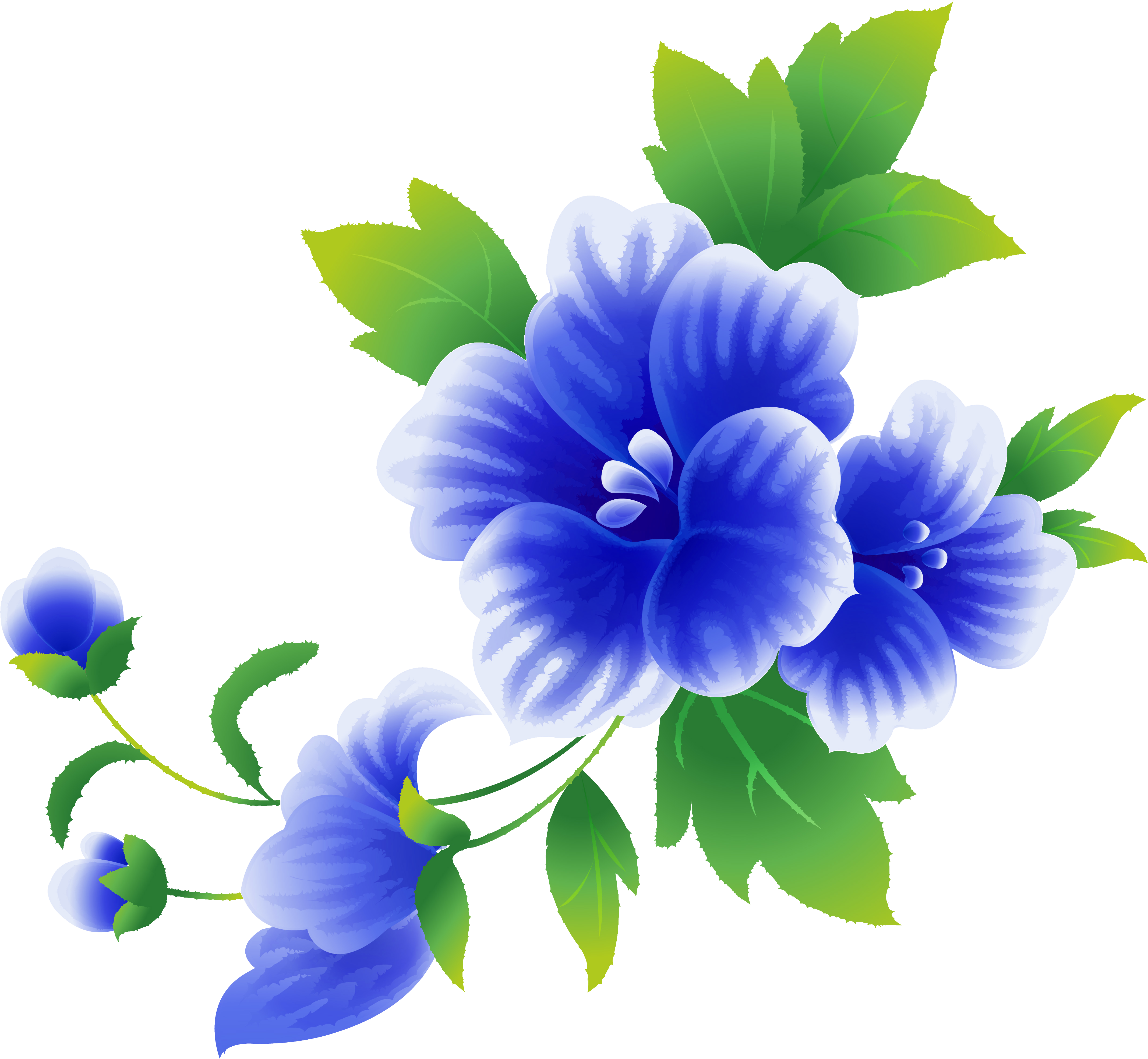 Картинки одиночных цветов для оформления
