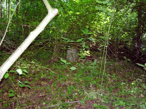Межевой столб 1909 года в Подушкинском лесу.