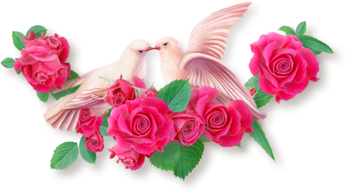 NLD Birds in Love Cluster.png