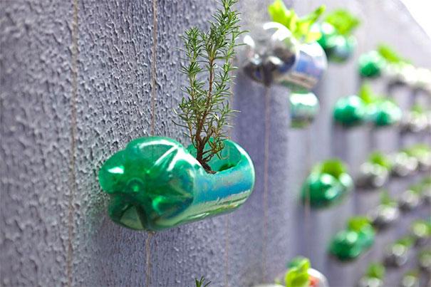 Пластиковые бутылки в вертикальном озеленении