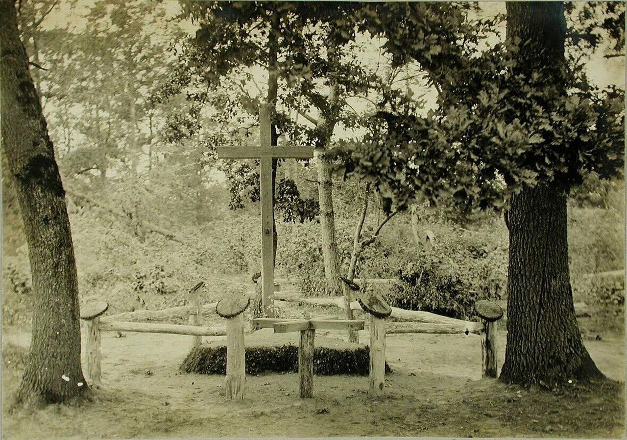 15. Общий вид братской могилы в Вертелецком лесу (у шоссе Тарнополь-Запозце)
