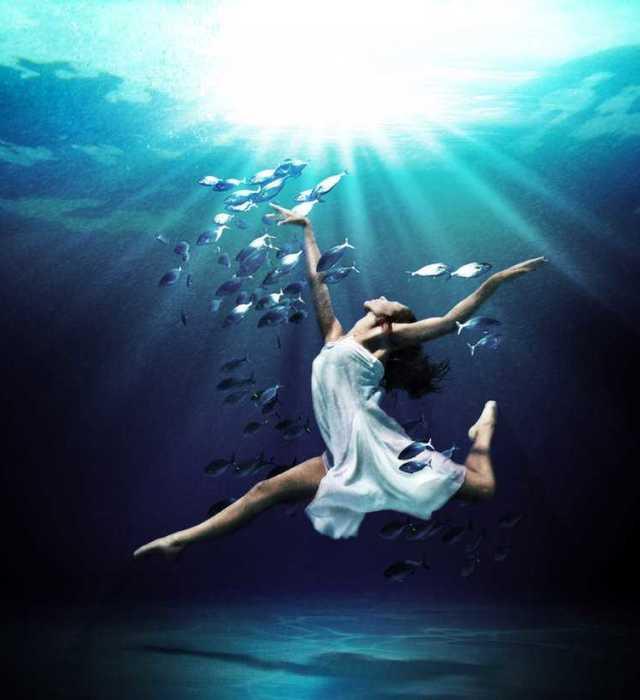 Mark Mawson Подводные фотографии (Underwater Photography) 0 10213b c4beaa55 orig