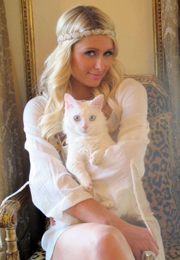 Пэрис Хилтон с кошкой