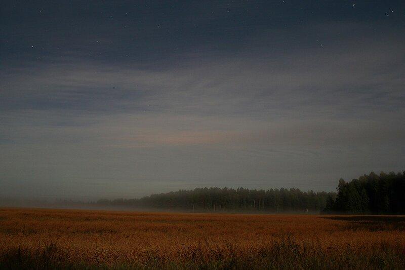 Туман на ночных полях, освещённых яркой луной и слабо заметное зеленое зарево северного сияния на горизонте