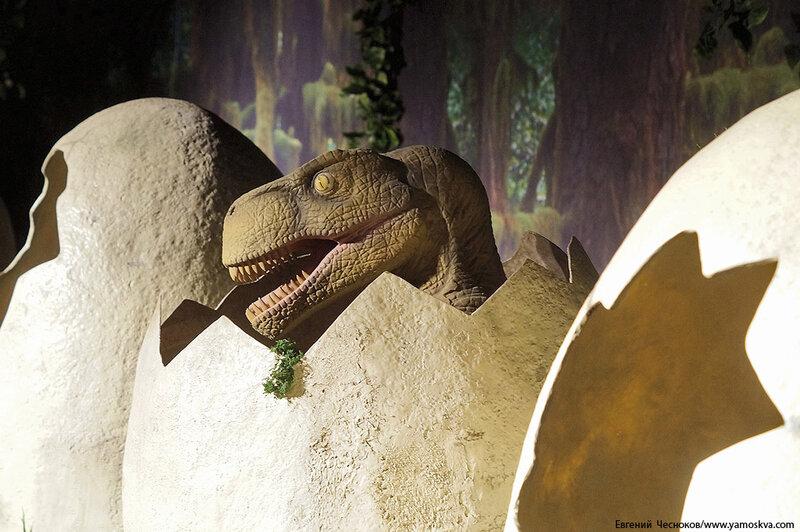 Весна. Детский мир. Динозавры. 31.03.15.08..jpg
