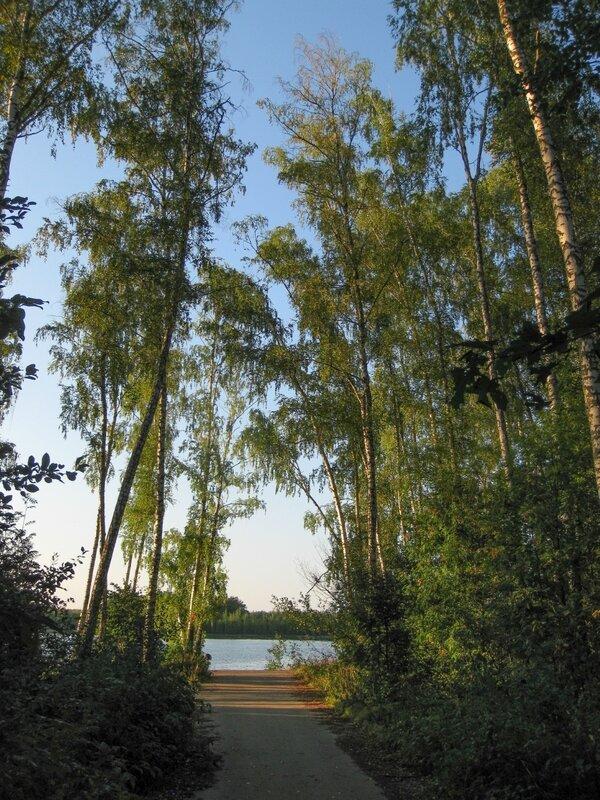 Дорога к водохранилищу, Пяловское водохранилище