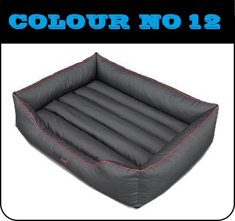 comfort12.jpg