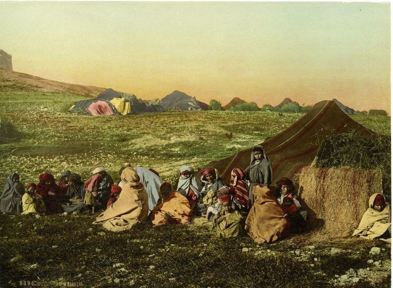 1890. Кочевники