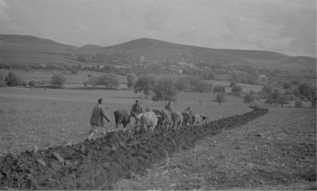 Крестьяне вспахивают поле