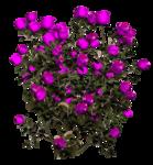 цветы (97).png