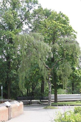 25-06-2014. Калининградский Зоопарк