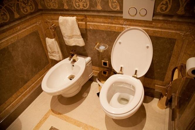 туалеты Межигорья.jpg