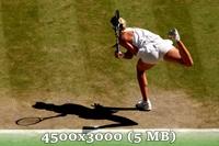 http://img-fotki.yandex.ru/get/6835/14186792.4d/0_da5a6_7d6d29a5_orig.jpg