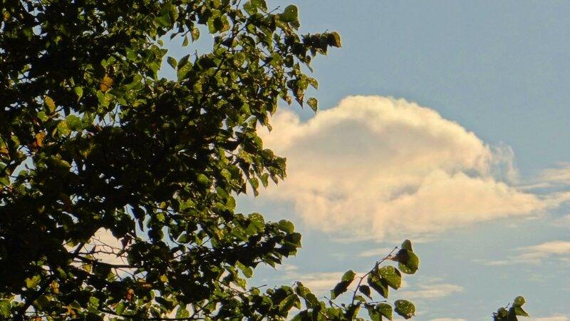 облака плывут