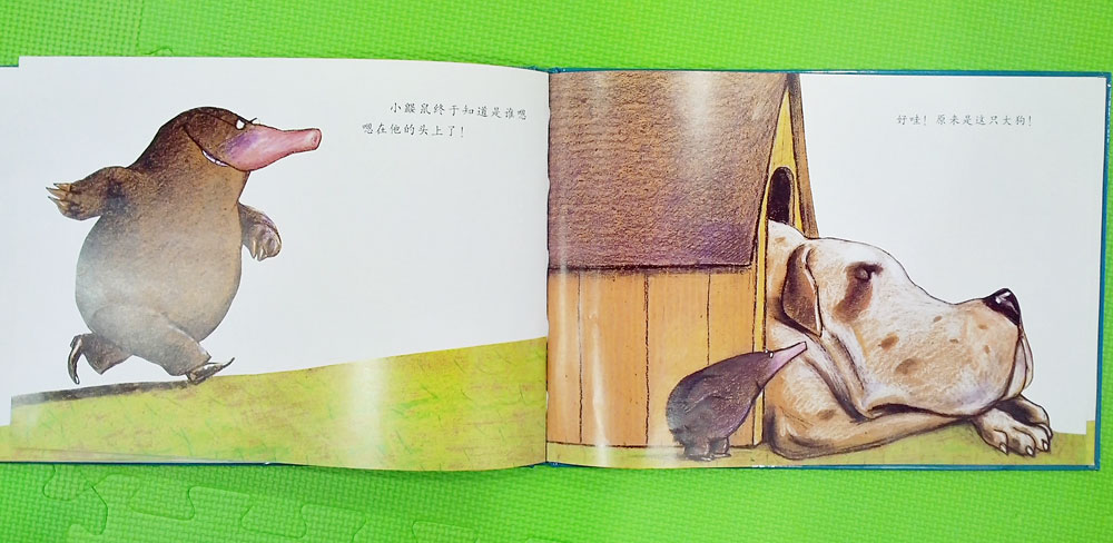Китайские детские книжки