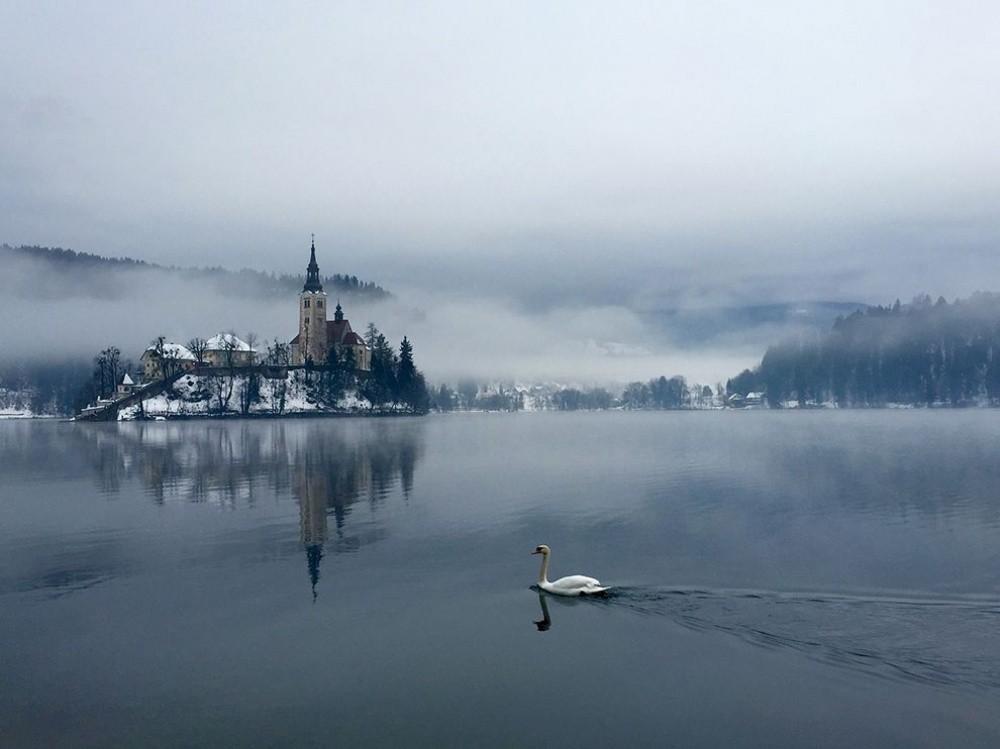 10. Лебединое озеро, Словения. (© Kostyantyn Steblovskyy)