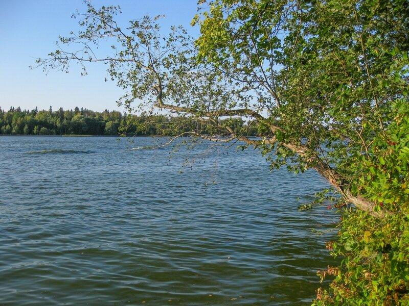Берег, Пяловское водохранилище