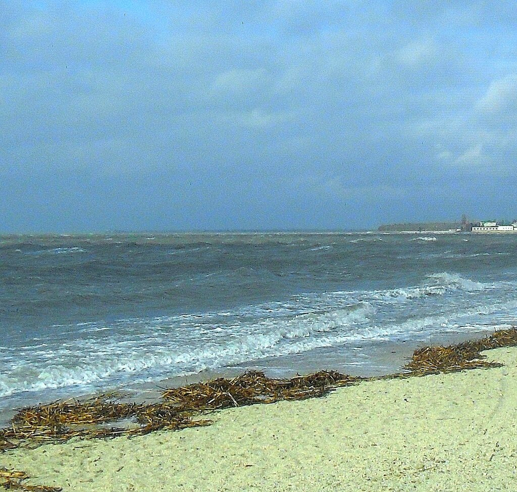 На берегу, в марте ... SAM_5738 - 1.JPG