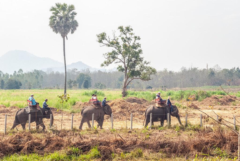 Тайланд. Поездка на реку Квэй– часть2