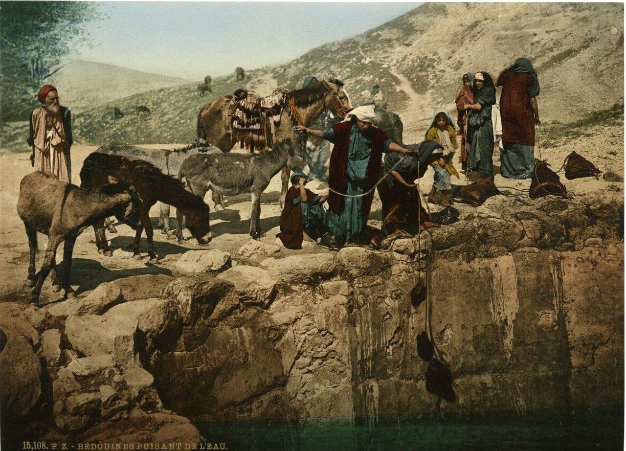 Бедуины у водопоя