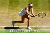 http://img-fotki.yandex.ru/get/6836/14186792.4d/0_da582_c7df7796_orig.jpg