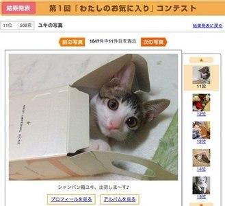 Какой бывает интернет-шоппинг в Японии