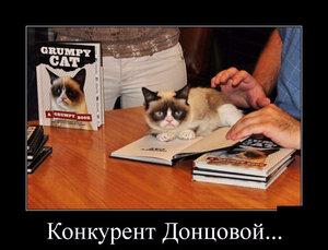 https://img-fotki.yandex.ru/get/6836/194408087.12/0_10140d_4a9f0385_M.jpg