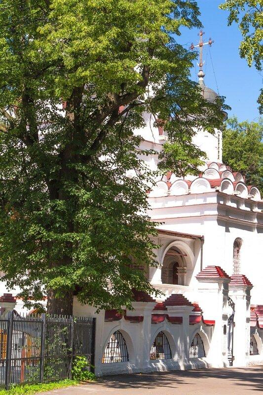 Музей-заповедник А.С. Пушкина (Захарово-Вяземы) - Большие Вяземы