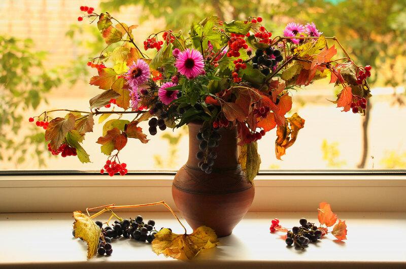 Осень на окне