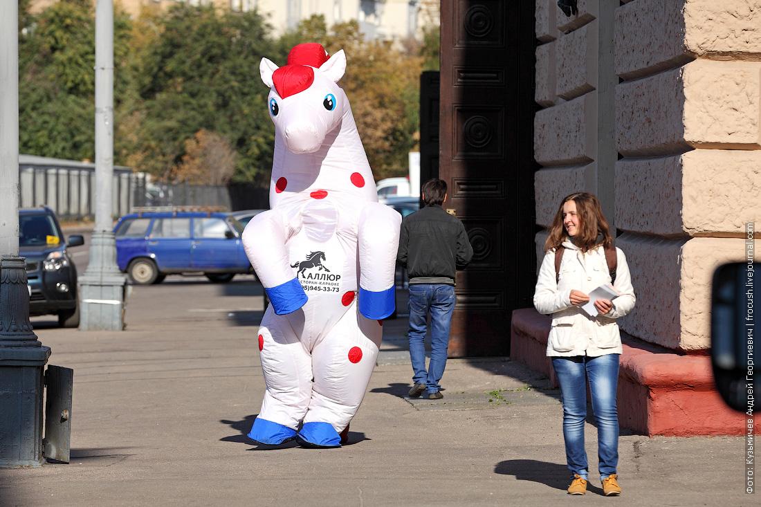 Центральный московский ипподром испытания