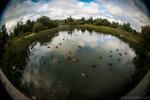 Экологический субботник. Соловьёвский пруд.