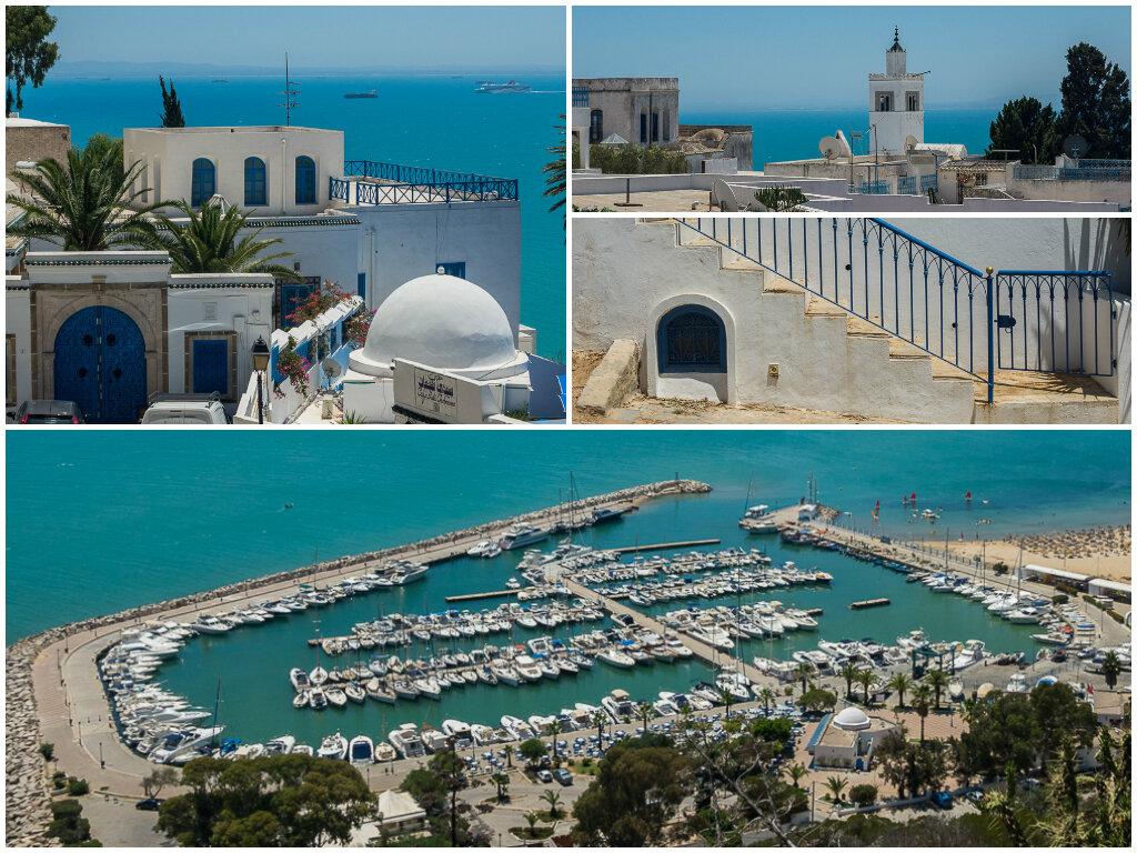 все о тунисе полезная информация фото дуб, ясень, бук