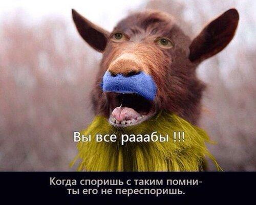 """Хроники триффидов: Фотошоп уже не в тренде. Укро""""сми"""" воруют кадры из фильмов"""