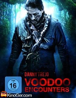Voodoo Ecounters (2014)