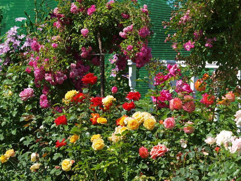 Для дачников и садоводов и ... не только