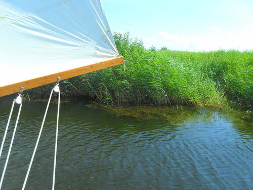 На яхте, июль