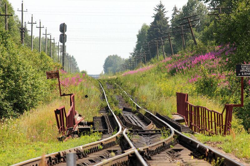 Станция Ржев-Балтийский, вид на Осугу