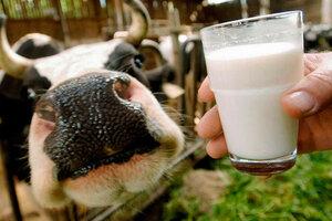 Бельцкий молокозавод не выплачивает людям деньги