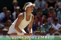 http://img-fotki.yandex.ru/get/6838/14186792.4d/0_da57a_18fe4695_orig.jpg