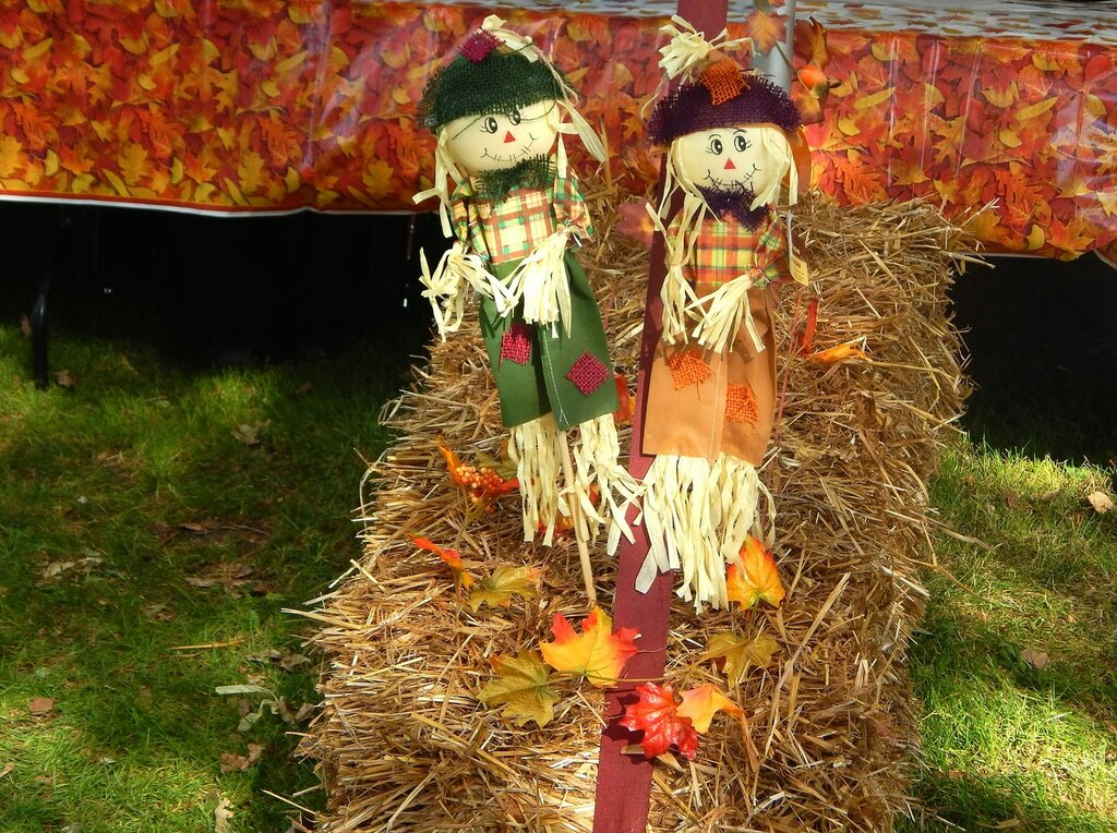 Фестиваль гигантской тыквы.