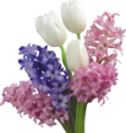 flower (14).png