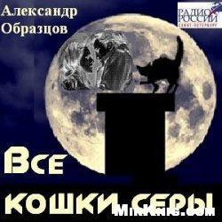 Аудиокнига Все кошки серы (аудиокнига)