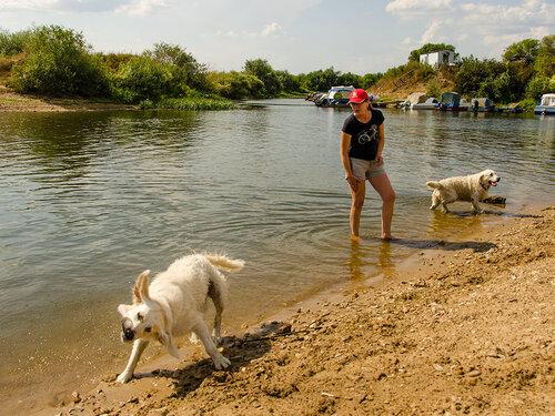 Девушка и веселая собака !