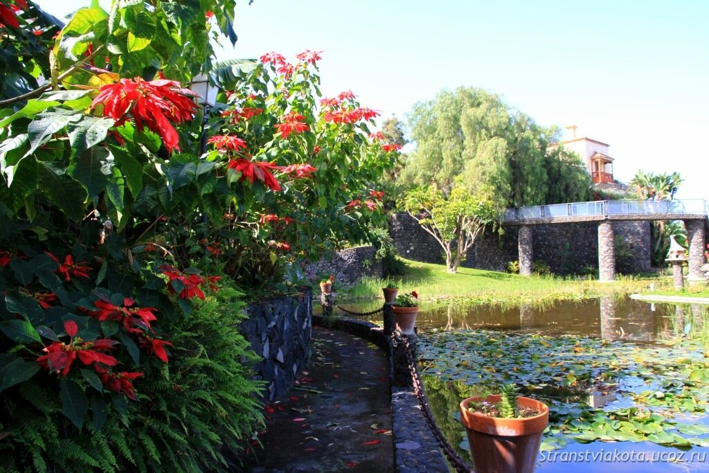 Тенерифе, Парк Акватико в Пуэрто Крус