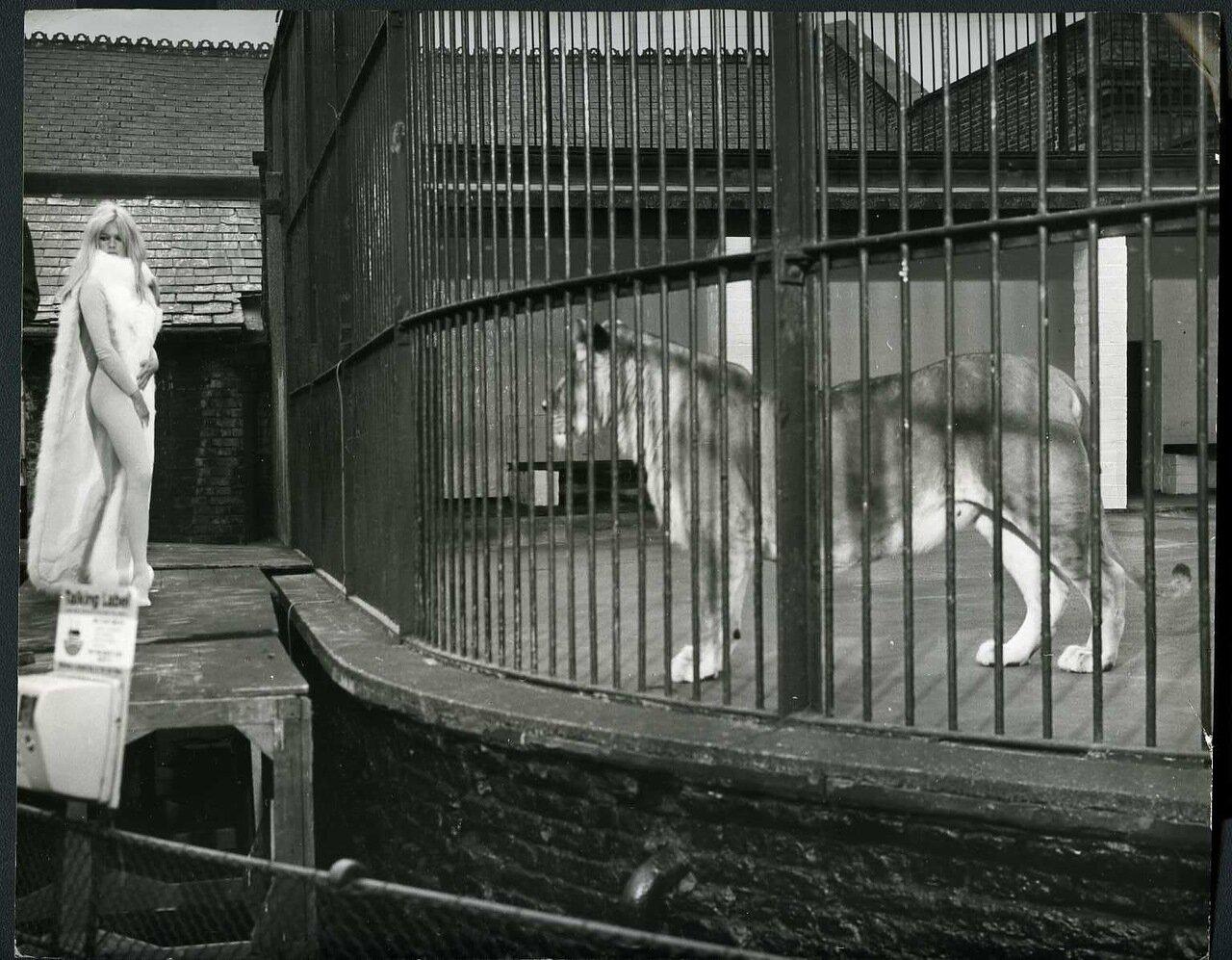 1966. Брижит Бардо в Лондонском зоопарке