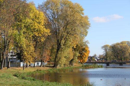 Прогулка. 17-10-2014. Городское озеро