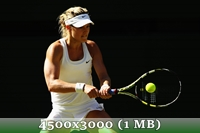http://img-fotki.yandex.ru/get/6839/14186792.4d/0_da5a2_d371198d_orig.jpg