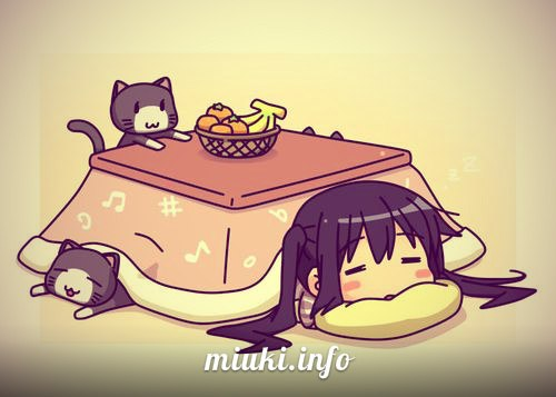 Котацу: тепло в японском доме